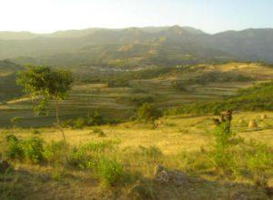 Modjo Edejre Arerti - Road Project (12)